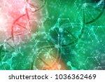 3d render of dna structure ... | Shutterstock . vector #1036362469