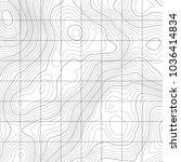 topographic map background....   Shutterstock .eps vector #1036414834