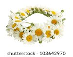 a wreath of white chamomiles on a white background - stock photo