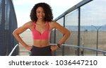slender african american female ... | Shutterstock . vector #1036447210