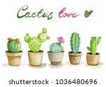watercolor illustration set... | Shutterstock . vector #1036480696