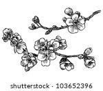 blooming tree sketch in vector | Shutterstock .eps vector #103652396