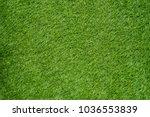 artificial grass on floor   Shutterstock . vector #1036553839