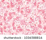 cherry blossoms spring flower... | Shutterstock .eps vector #1036588816