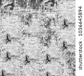 grunge black and white   Shutterstock . vector #1036645894