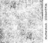 grunge black and white.... | Shutterstock . vector #1036645936