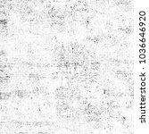 grunge black and white.... | Shutterstock . vector #1036646920