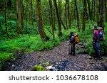 garut  west java   indonesia  ... | Shutterstock . vector #1036678108
