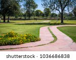 the garden and park in the... | Shutterstock . vector #1036686838