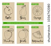 fruit packaging design template ... | Shutterstock .eps vector #1036742080