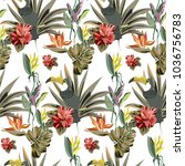 tropical pattern with exotic... | Shutterstock .eps vector #1036756783