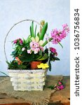 spring garden  flowers on...   Shutterstock . vector #1036756834