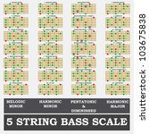 5 string bass scale minor for... | Shutterstock .eps vector #103675838