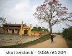 vinh phuc  vietnam   mar 22 ... | Shutterstock . vector #1036765204