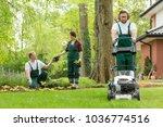 optimistic team of gardeners... | Shutterstock . vector #1036774516
