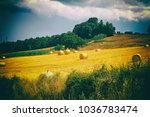 tuscany landscape with hay... | Shutterstock . vector #1036783474