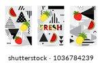 trendy fruit  watermelon ... | Shutterstock .eps vector #1036784239