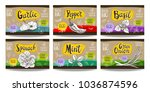 set colorful food labels ...   Shutterstock .eps vector #1036874596