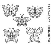 butterfly doodle style hand... | Shutterstock .eps vector #1036947958