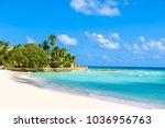 dover beach   tropical beach on ...   Shutterstock . vector #1036956763