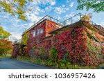Abandoned Building Covered Wit...