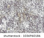 creative background texture for ... | Shutterstock . vector #1036960186