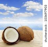 Coconut On The Beach Near See...