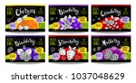 set colorful food labels ... | Shutterstock .eps vector #1037048629