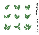 set of green leaf logo template  | Shutterstock .eps vector #1037067604