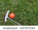 orange golf ball and putter on... | Shutterstock . vector #1037075164
