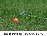 orange golf ball and putter on... | Shutterstock . vector #1037075170