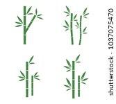 set of green bamboo vector... | Shutterstock .eps vector #1037075470