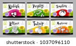 set colorful food labels ... | Shutterstock .eps vector #1037096110