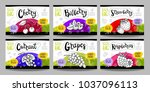 set colorful food labels ... | Shutterstock .eps vector #1037096113
