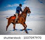 horse javelin games | Shutterstock . vector #1037097970