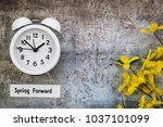 spring daylight saving time... | Shutterstock . vector #1037101099