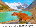 autumn tree by the lake near... | Shutterstock . vector #1037102476