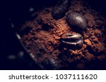 grains of coffee lie on ground... | Shutterstock . vector #1037111620