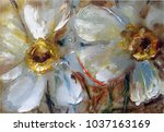 daffodils  pale yellow delicate ... | Shutterstock . vector #1037163169