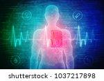 2d illustration human male...   Shutterstock . vector #1037217898
