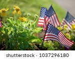 low angle closeup of american... | Shutterstock . vector #1037296180