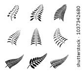 new zealand fern leaf tattoo... | Shutterstock .eps vector #1037342680