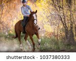 young pretty girl   riding a... | Shutterstock . vector #1037380333