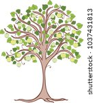 apple tree with green apples | Shutterstock .eps vector #1037431813