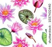 watercolor hand painted pink... | Shutterstock . vector #1037432440