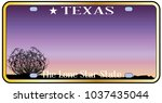 texas state license plate with... | Shutterstock . vector #1037435044