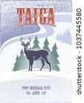 taiga  horned deer on firs... | Shutterstock .eps vector #1037445580