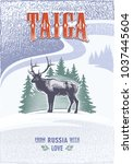 taiga  the deer horned on the... | Shutterstock .eps vector #1037445604