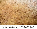 beautiful abstract background.... | Shutterstock . vector #1037469160
