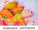 holi powder used to celebrate... | Shutterstock . vector #1037545240